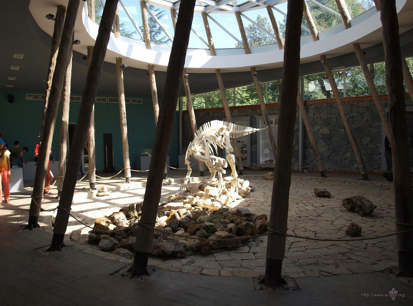 Sataplia - dinosaur museum