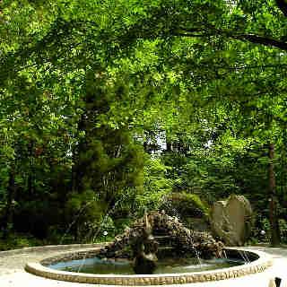 Ботанический сад Зугдиди